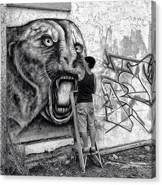 Tigers Canvas Print - Wynwood Walking - Miami by Joel Lopez