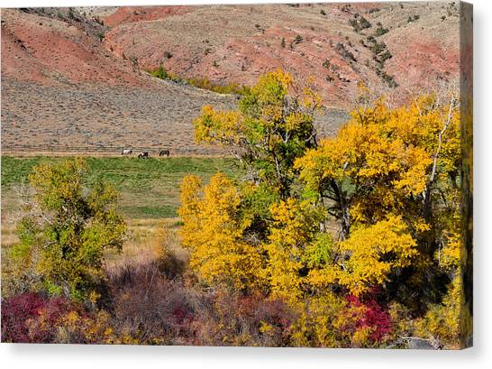 Bishop Hill Canvas Print - Wyoming Horse Country by Kathleen Bishop