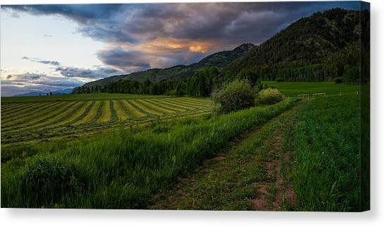 Pasture Canvas Print - Wyoming Pastures by Chad Dutson