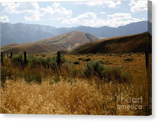 Wyoming Scenery Canvas Print by Sophie Vigneault
