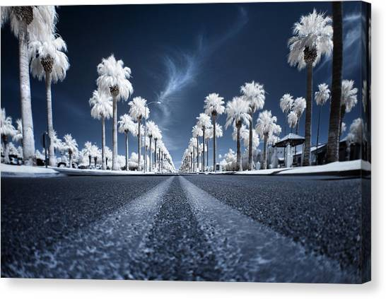 Roads Canvas Print - X by Sean Foster