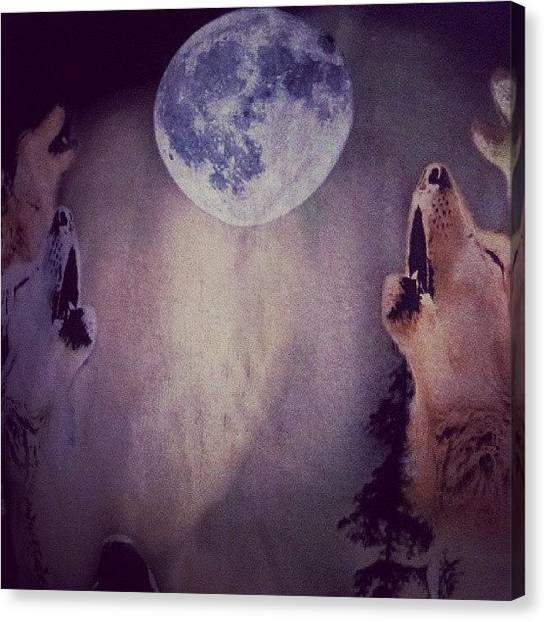 Wolf Moon Canvas Print - Y Por Eso Te Miro Asi....;;como Un Lobo by Aneudy Amparo