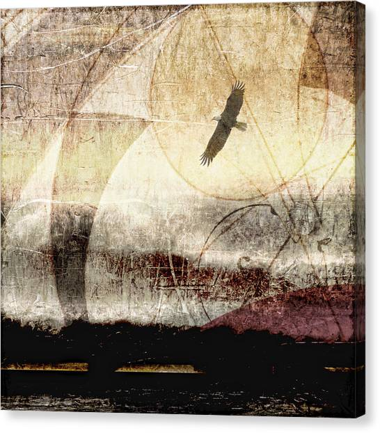 Golden Eagle Canvas Print - Yachats Eagle Square Format by Carol Leigh