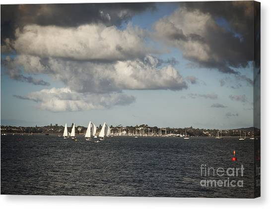 New Zealand Canvas Print - Yachts Waitemata Harbour Auckland New Zealand by Colin and Linda McKie