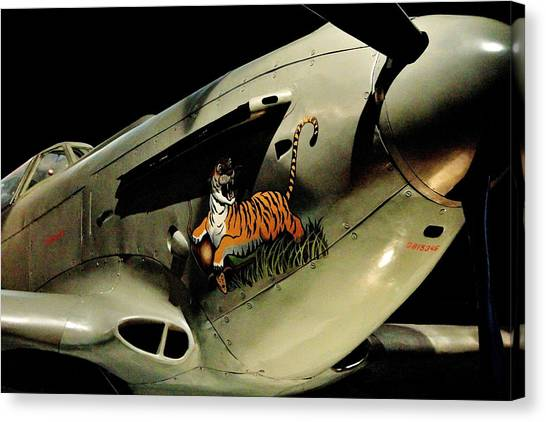 Yaks Canvas Print - Yak 9 Tiger by Benjamin Yeager