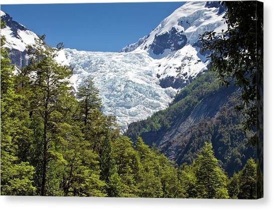 Chico Canvas Print - Yelcho Chico Glacier by Philippe Psaila