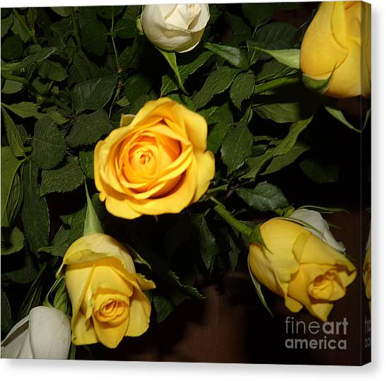 Yellow And White Roses Canvas Print