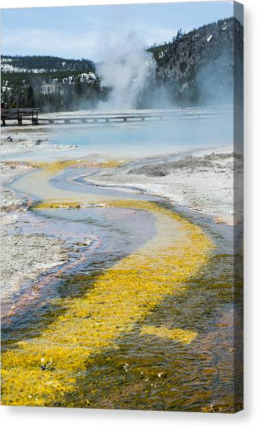 Yellowstone Brick Road Canvas Print