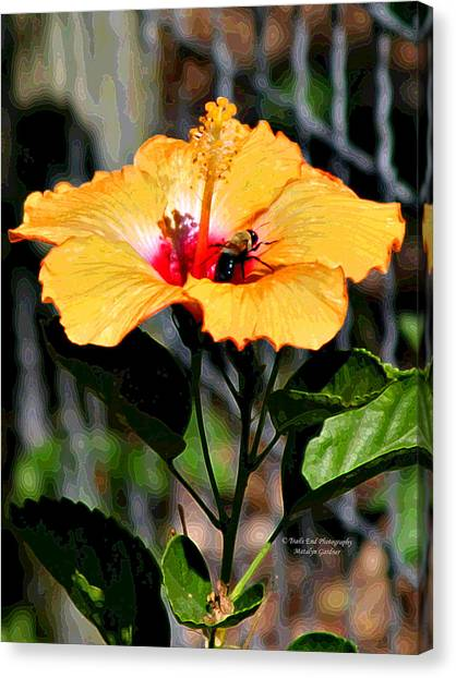 Yellow Bumble Bee Flower Canvas Print