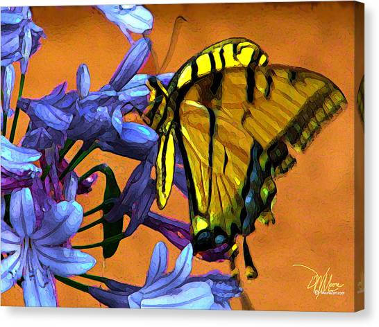 Yellow Butterfly On Agapanthus Canvas Print