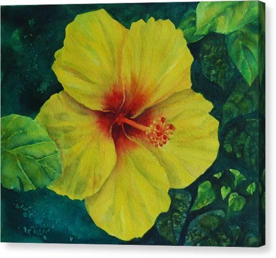 Yellow Hibiscus Canvas Print by Donna Pierce-Clark
