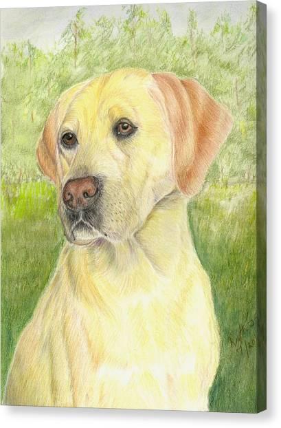 Yellow Labrador Retiever Canvas Print