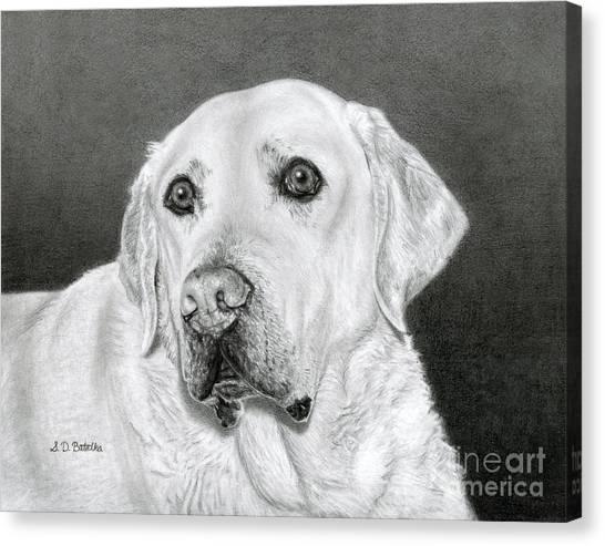 Yellow Lab Canvas Print - Yellow Labrador Retriever- Bentley by Sarah Batalka