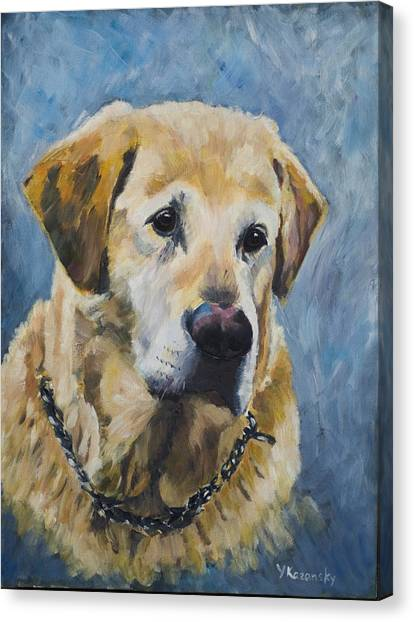 Yellow Lab Canvas Print
