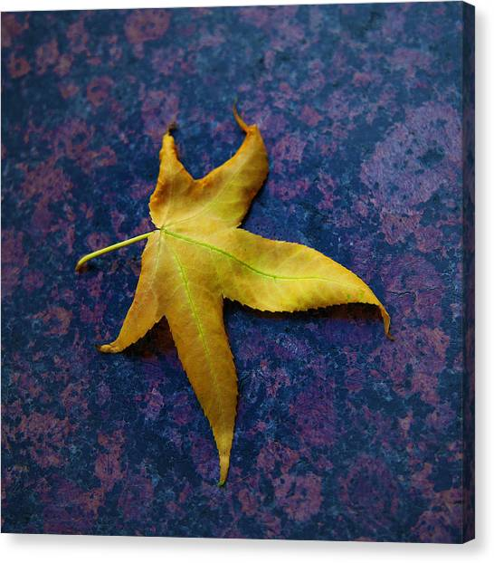 Yellow Leaf On Marble Canvas Print