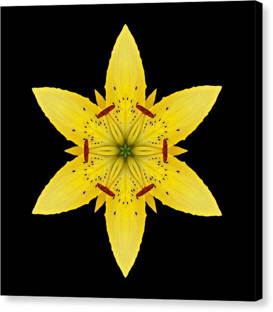 Yellow Lily I Flower Mandala Canvas Print
