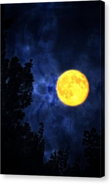 Yellow Moon Canvas Print by Dan Quam