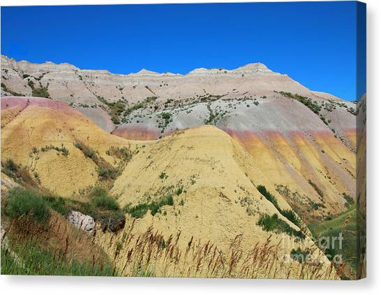 Yellow Mounds Badlands National Park Canvas Print