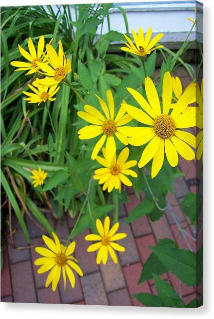 Yellow On Brick Road Canvas Print