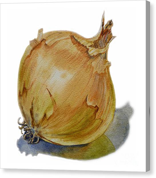 Vegetables Canvas Print - Yellow Onion by Irina Sztukowski