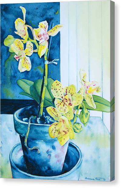Canvas Print - Yellow Orchid by Zuzana Vass