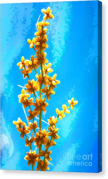 Canvas Print featuring the photograph Yellow Plant by Yew Kwang