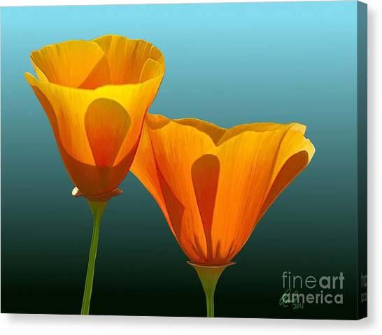 Yellow Poppies Canvas Print