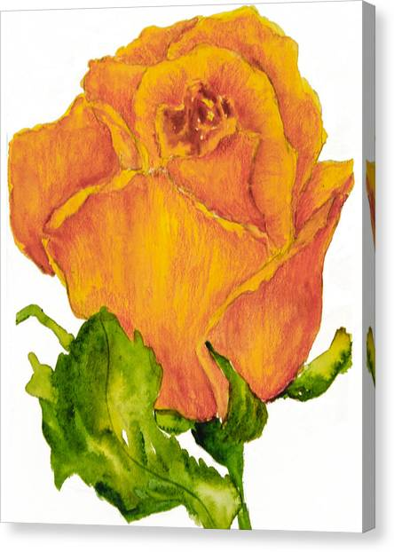 Yellow Rose Bud Canvas Print