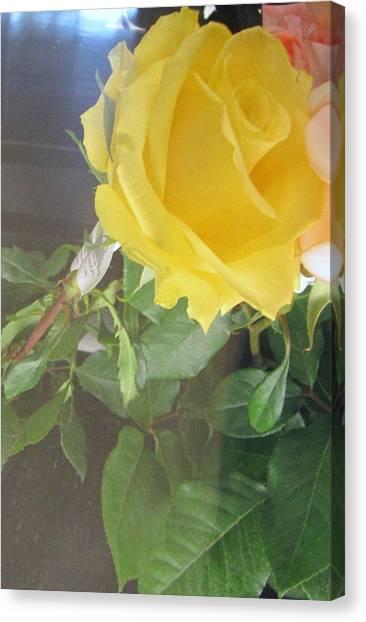 Yellow Rose- Greeting Card Canvas Print