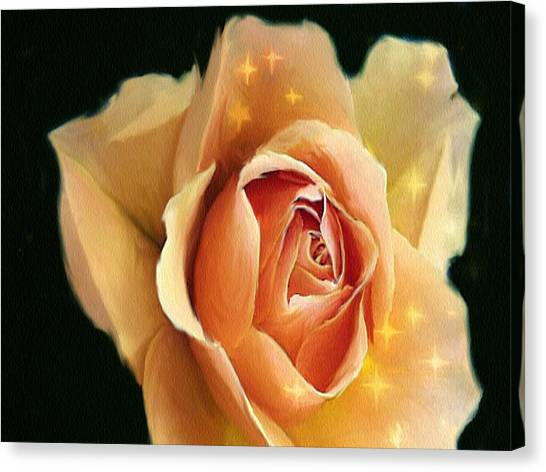 Yellow Rose Highlighted Canvas Print