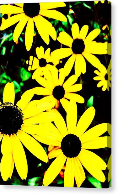 Yellow Stroll Canvas Print by Paul Tully