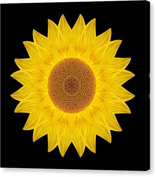 Yellow Sunflower Ix Flower Mandala Canvas Print