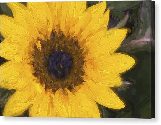 Cottage Style Canvas Print - Yellow Sunflower Painterly by Carol Leigh