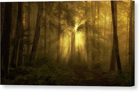 Atmosphere Canvas Print - Yellow - The Bigger Picture by Norbert Maier