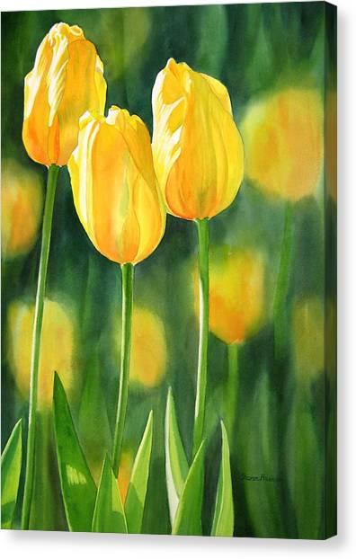Watercolour Garden Canvas Print - Yellow Tulips by Sharon Freeman