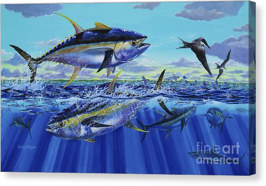 Tiger Sharks Canvas Print - Yellowfin Bust Off0083 by Carey Chen