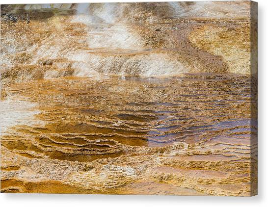 Yellowstone Gold Canvas Print