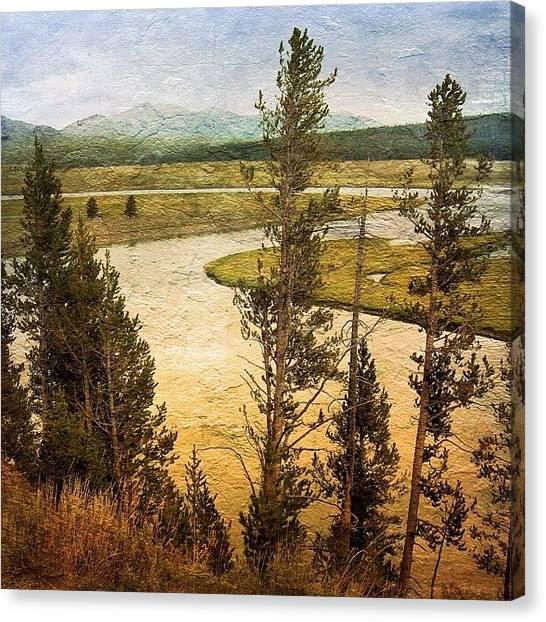 Yellowstone National Park Canvas Print - Yellowstone Autumn by Mark David Gerson