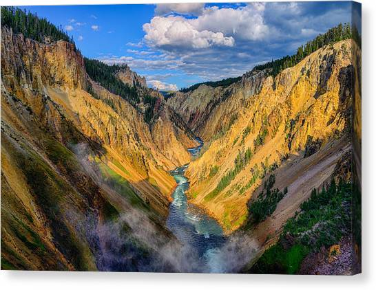Canvas Print featuring the photograph Yellowstone Canyon View by Greg Norrell