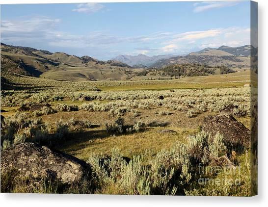 Yellowstone Landscape Canvas Print by Sophie Vigneault