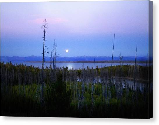 Yellowstone Moon Canvas Print