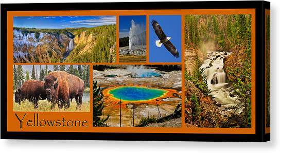 Canvas Print featuring the photograph Yellowstone National Park by Greg Norrell