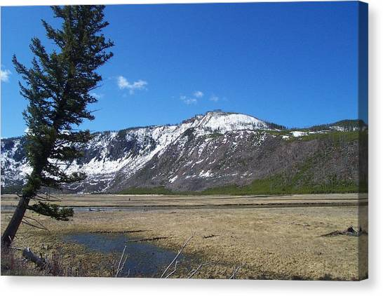 Yellowstone Park Beauty 1 Canvas Print
