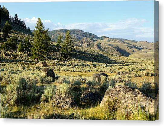 Yellowstone Scenery Canvas Print by Sophie Vigneault