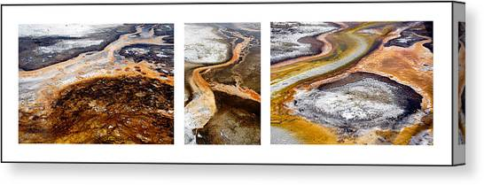 Yellowstone Triptych Canvas Print