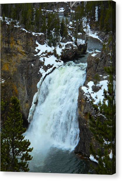 Yellowstone Upper Falls In Spring Canvas Print