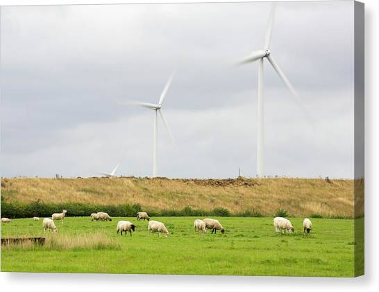 Wind Farms Canvas Print - Yelvertoft Wind Farm by Ashley Cooper/science Photo Library