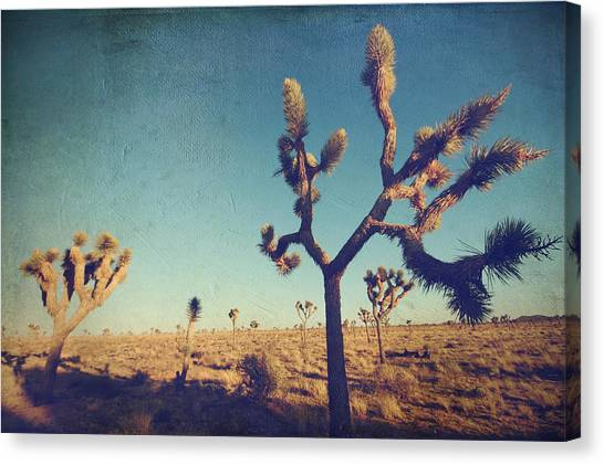 Desert Canvas Print - Yes I'm Still Running by Laurie Search