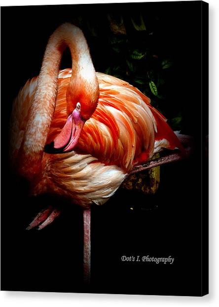 Yoga Flamingo Canvas Print by Dorothy Hilde