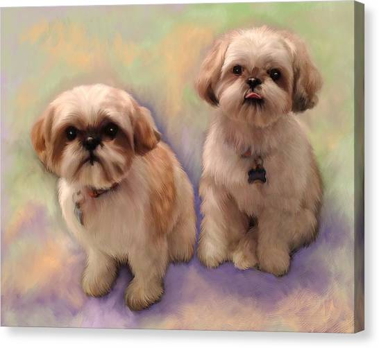 Shih Tzus Canvas Print - Yogi And Boo Boo by Sandra Selle Rodriguez